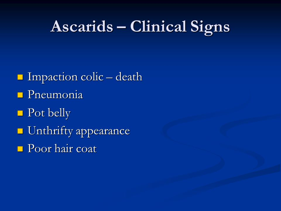Ascarids – Clinical Signs