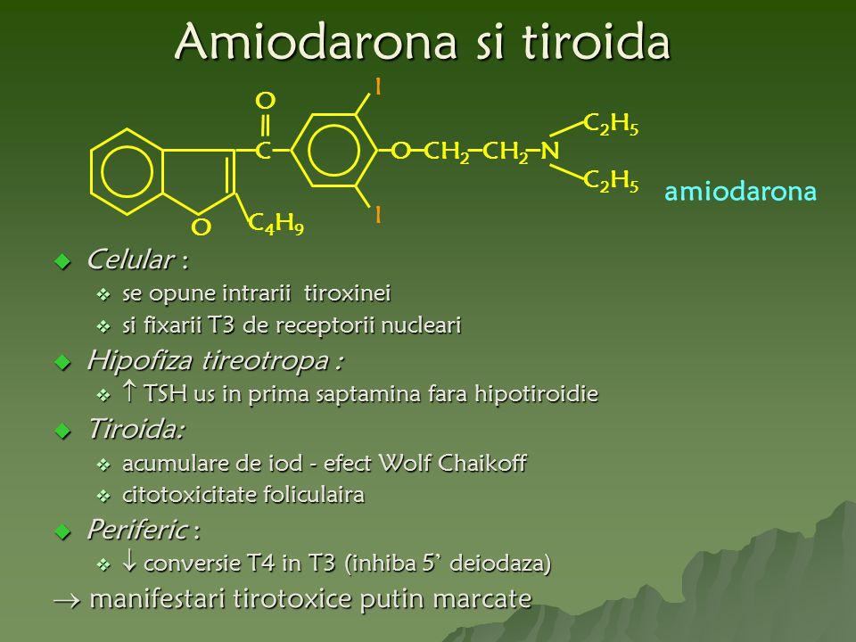 Amiodarona si tiroida amiodarona Celular : Hipofiza tireotropa :