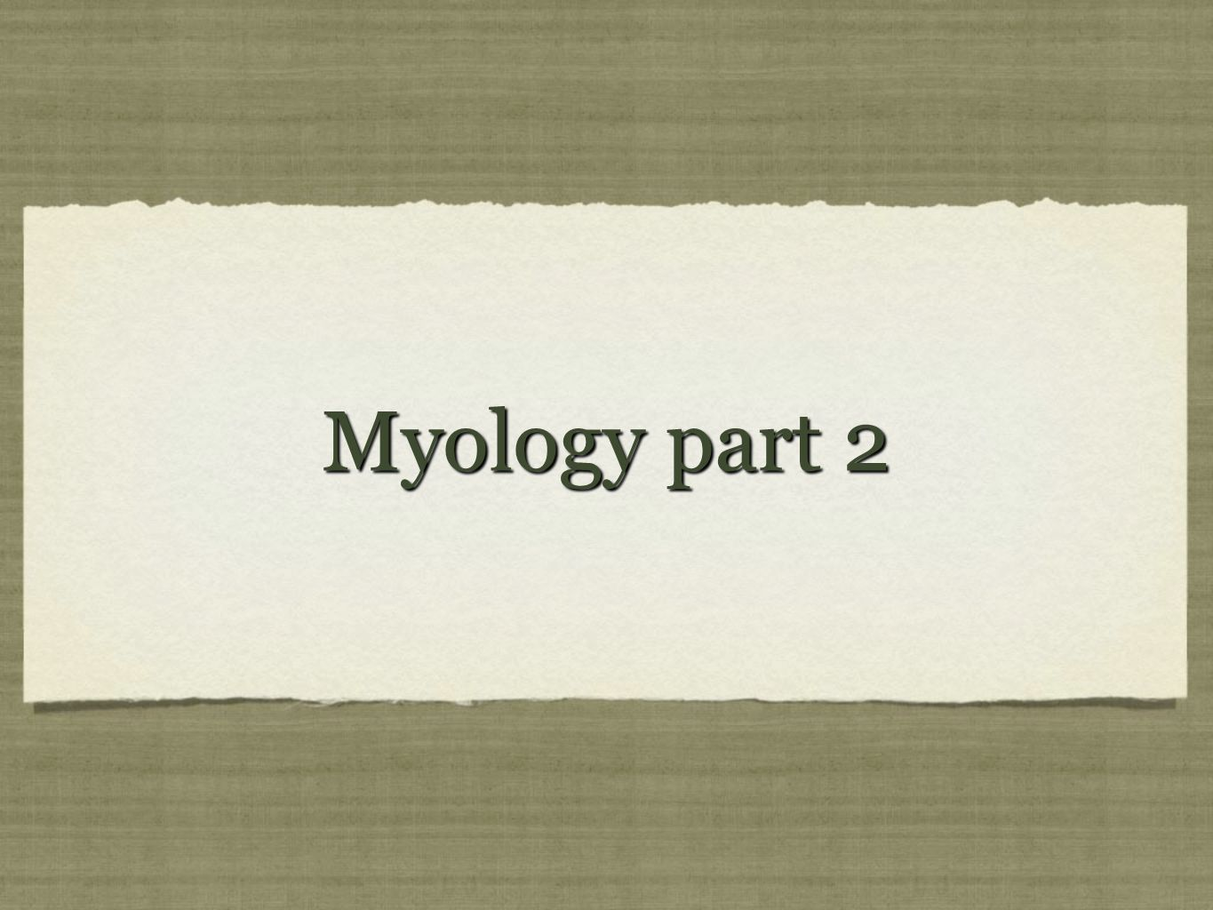 Myology part 2