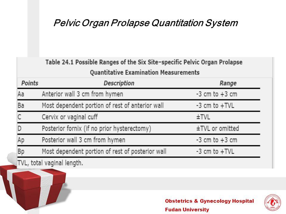 Pelvic Organ Prolapse Quantitation System