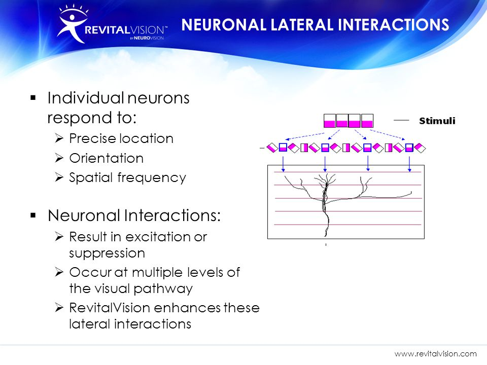 NEURONAL LATERAL INTERACTIONS