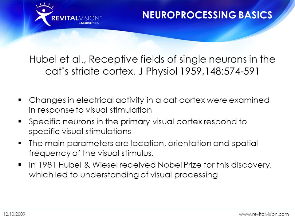 NEUROPROCESSING BASICS