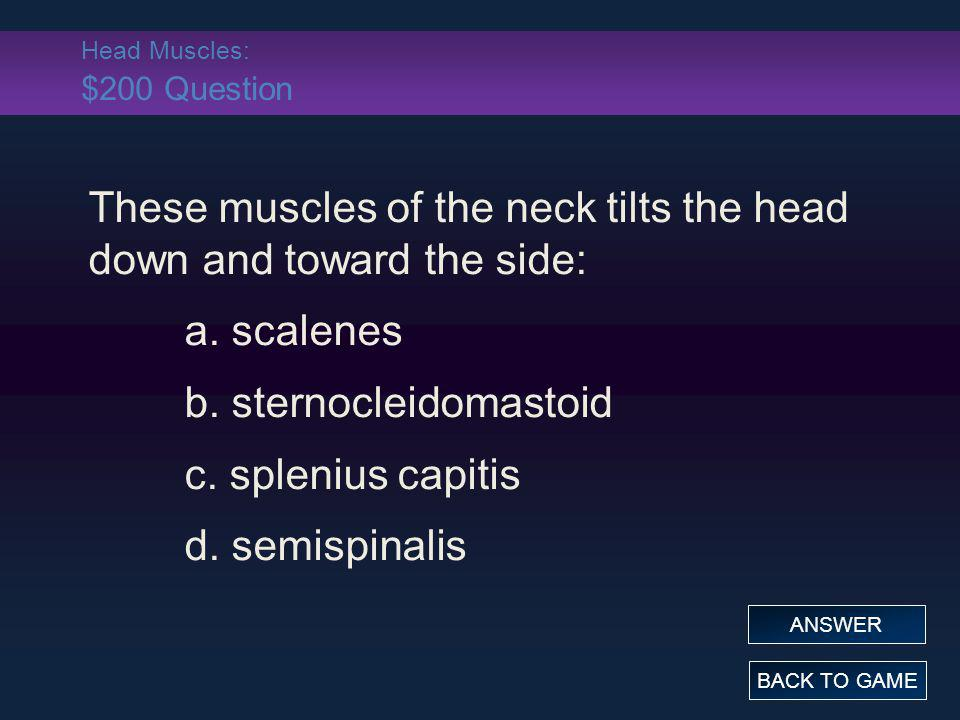Head Muscles: $200 Question