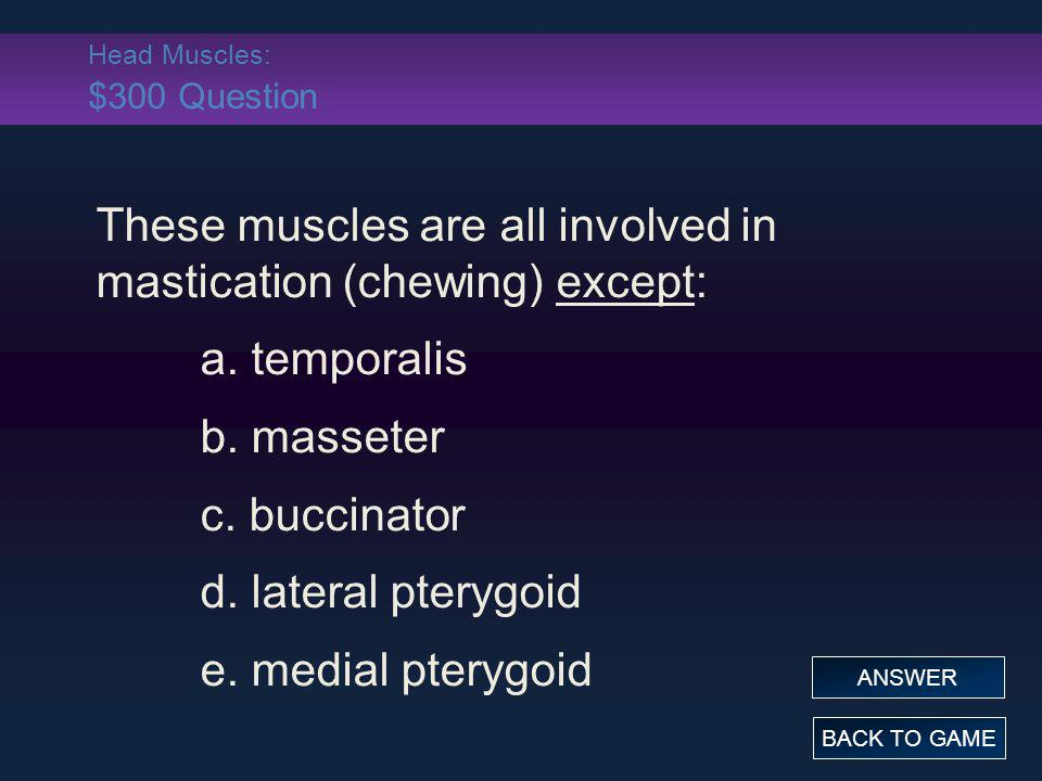 Head Muscles: $300 Question