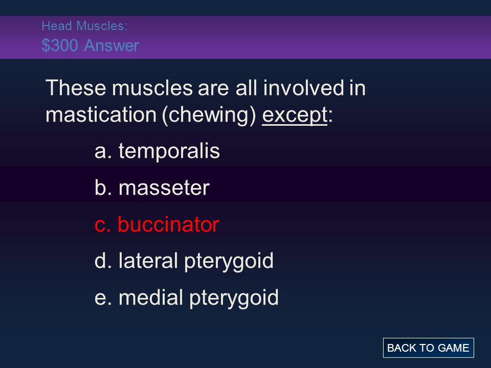 These muscles are all involved in mastication (chewing) except: