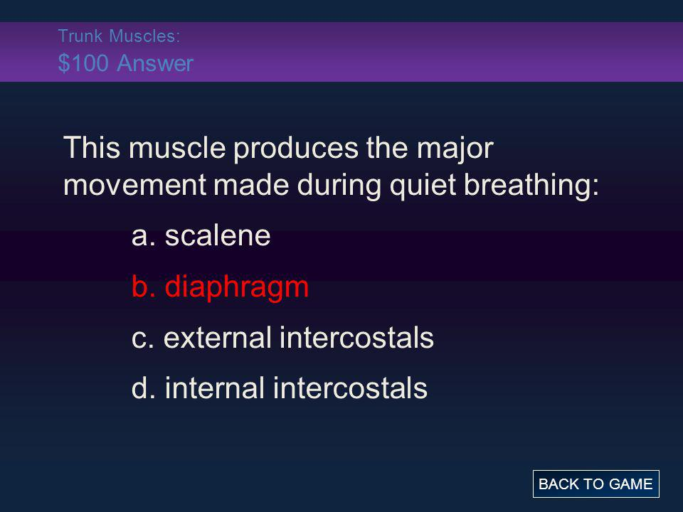 Trunk Muscles: $100 Answer