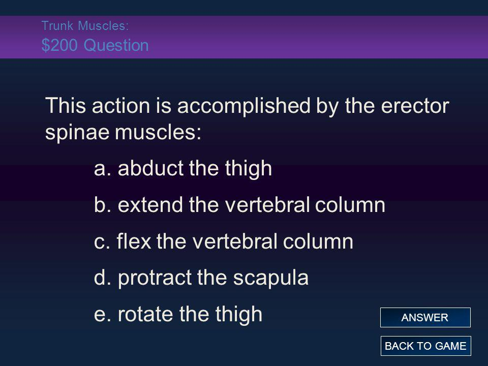 Trunk Muscles: $200 Question