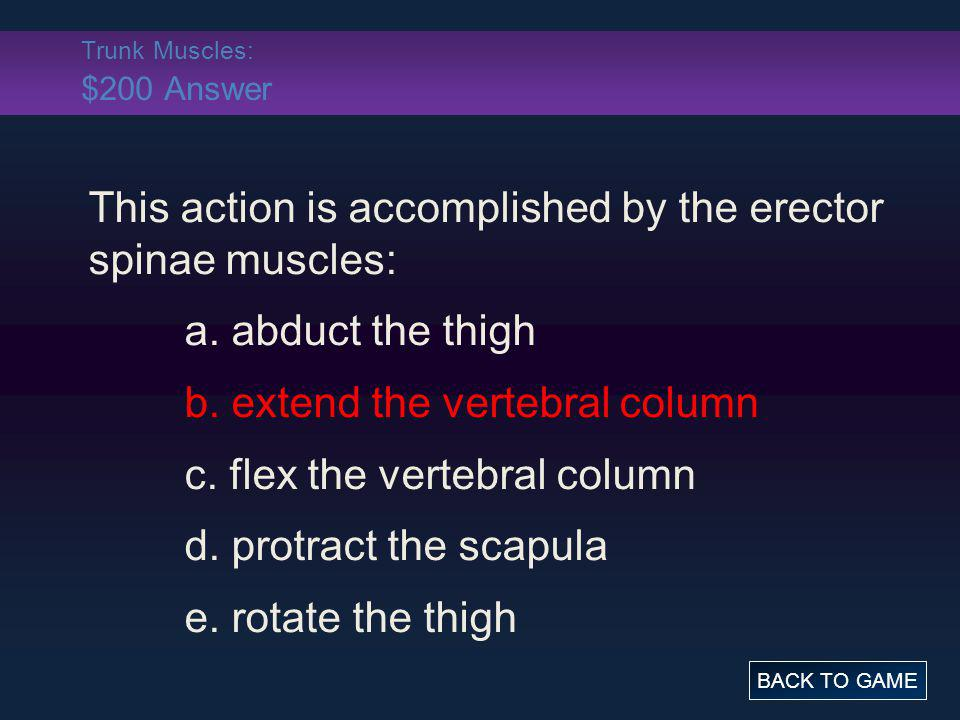 Trunk Muscles: $200 Answer