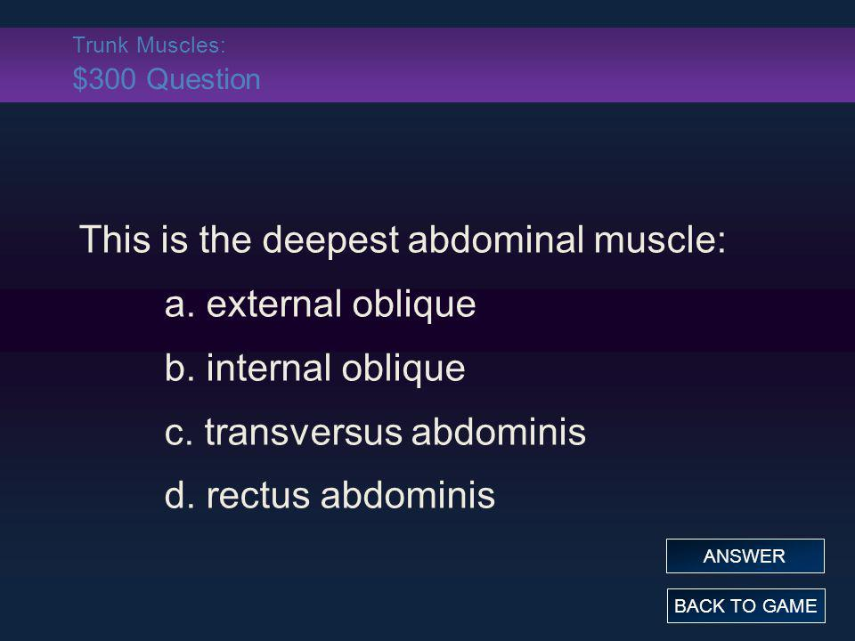 Trunk Muscles: $300 Question