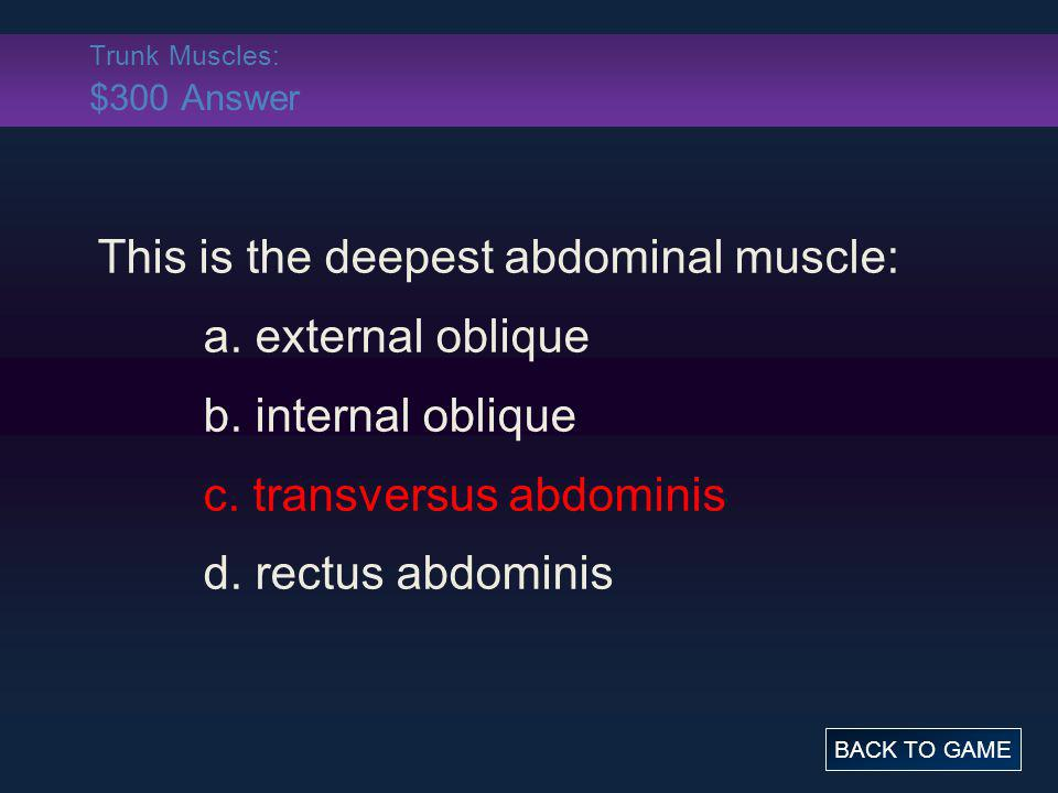 Trunk Muscles: $300 Answer