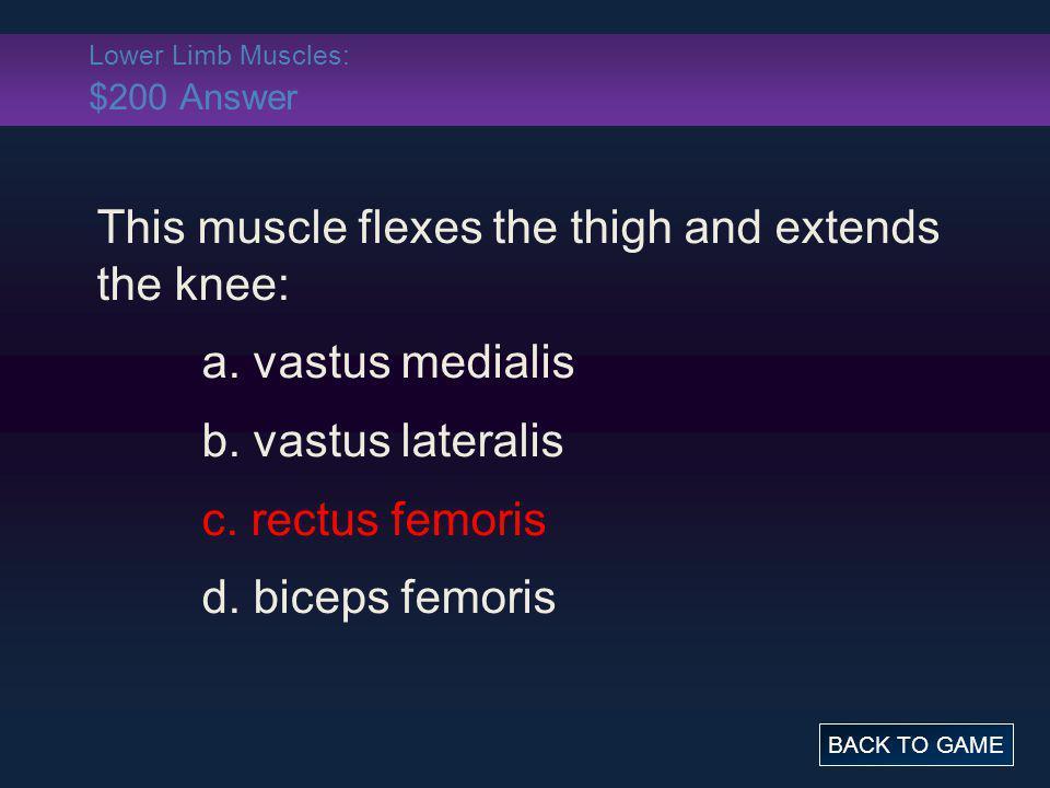 Lower Limb Muscles: $200 Answer