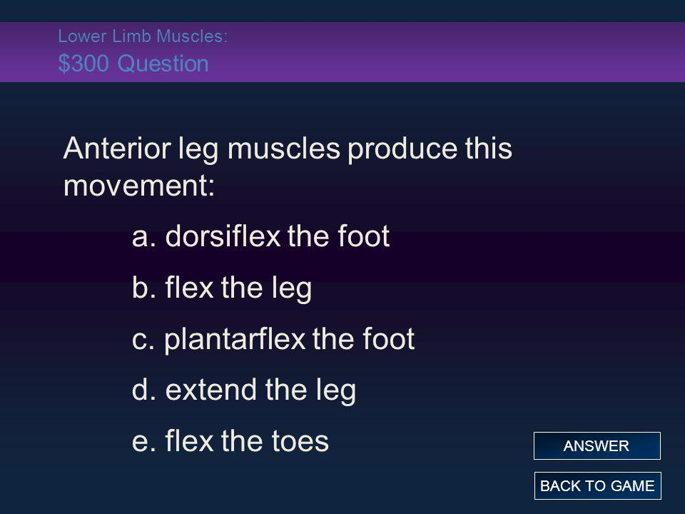 Lower Limb Muscles: $300 Question
