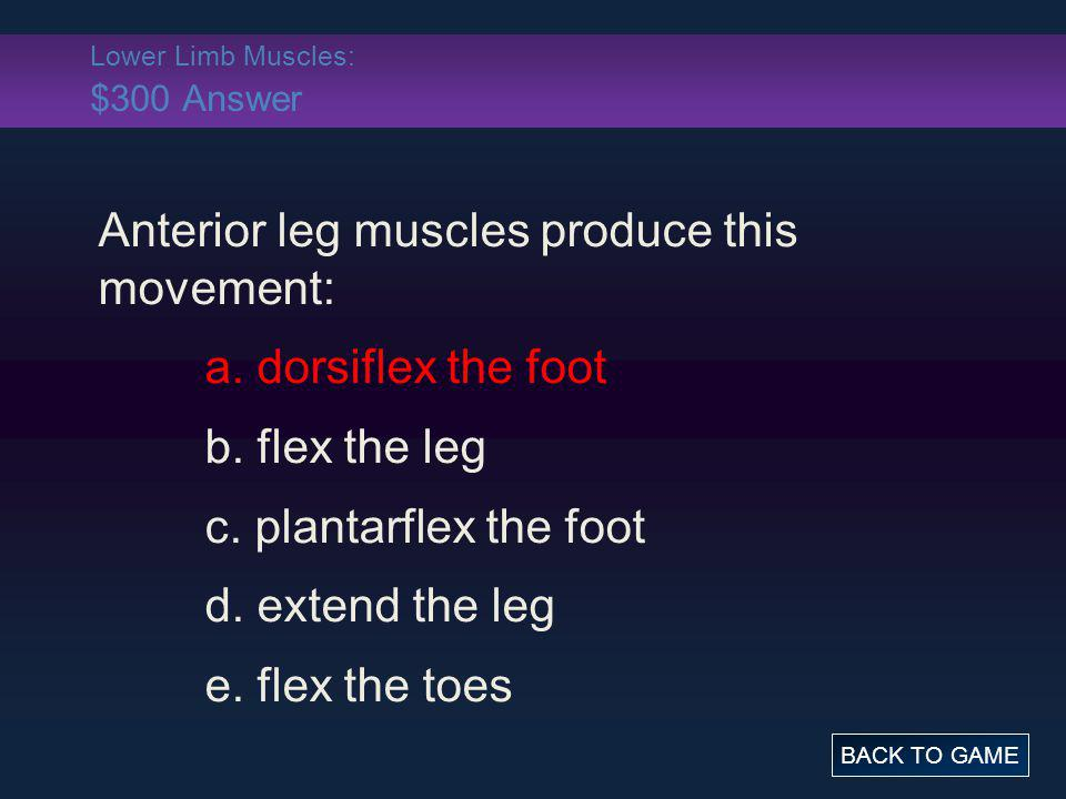 Lower Limb Muscles: $300 Answer