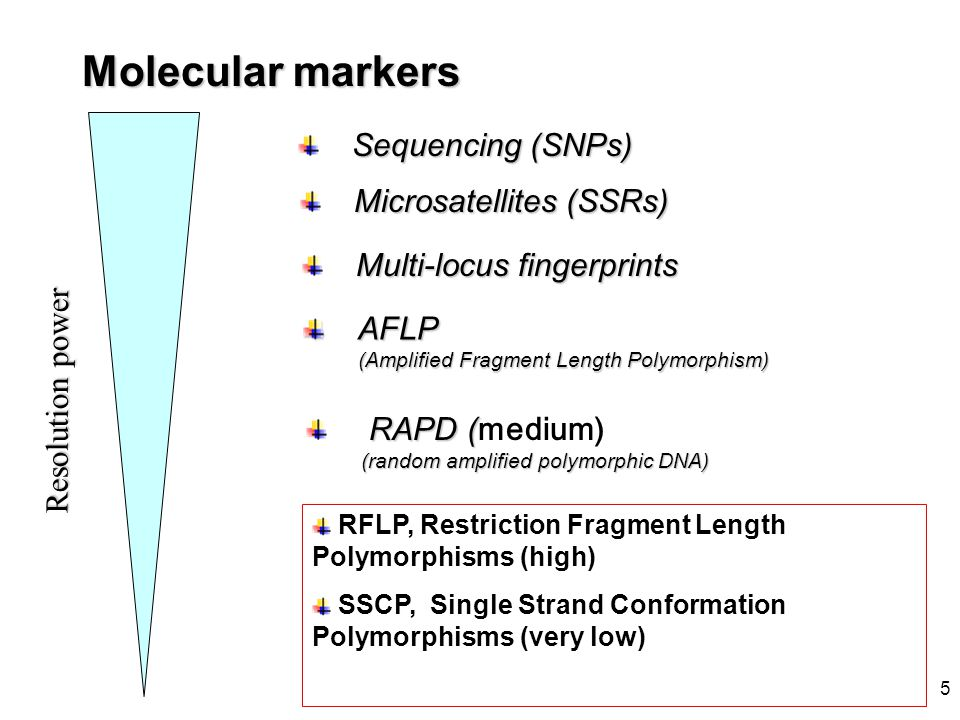 Molecular markers Sequencing (SNPs) Microsatellites (SSRs)