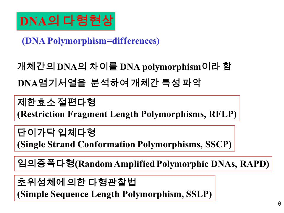 DNA의 다형현상 (DNA Polymorphism=differences)