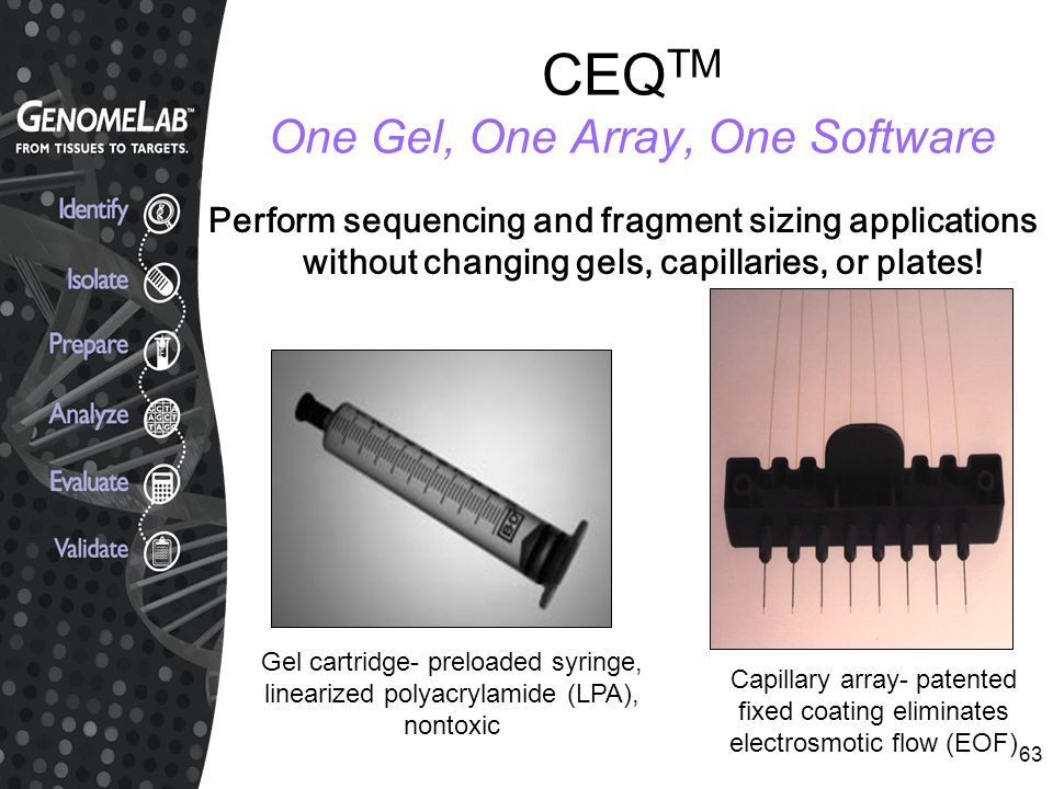 CEQTM One Gel, One Array, One Software