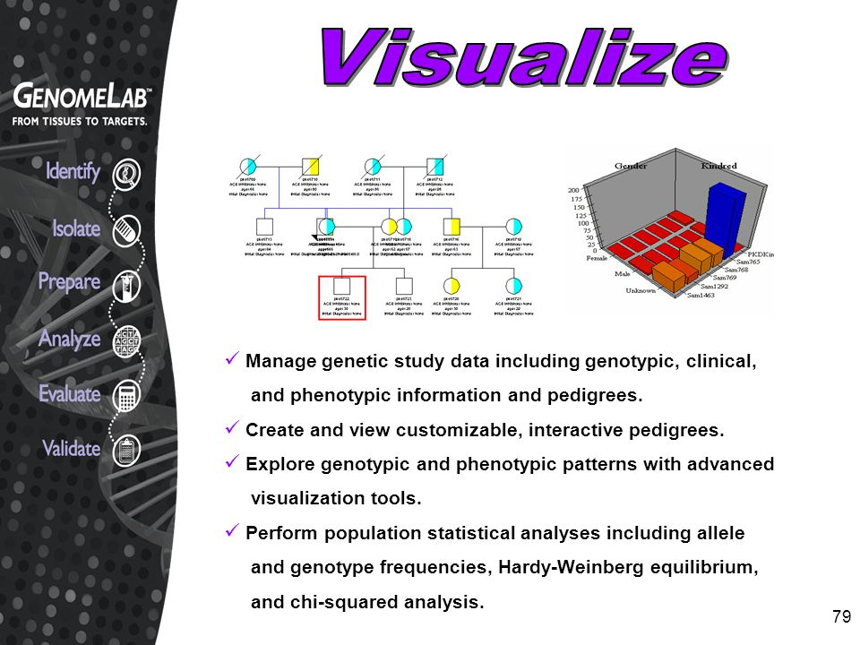 Visualize Manage genetic study data including genotypic, clinical,