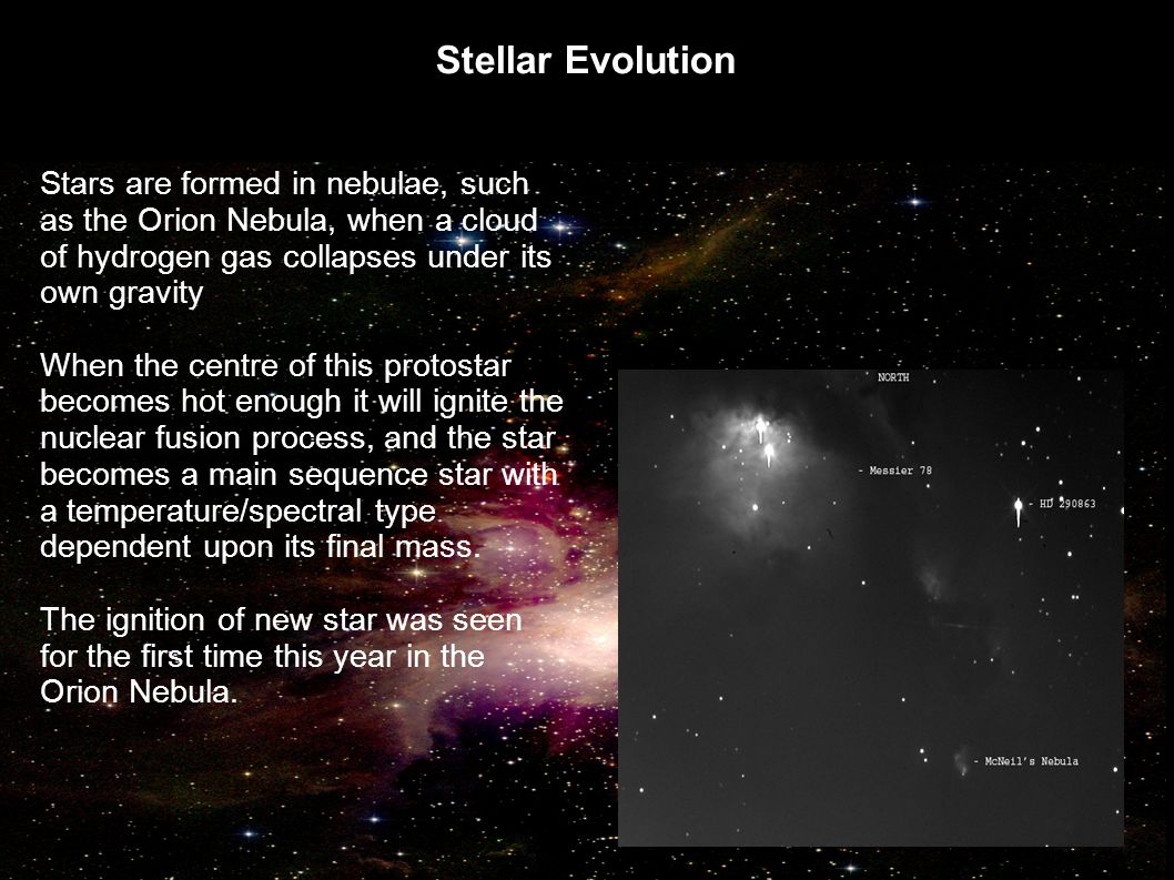 Stellar Evolution Stars are formed in nebulae, such as the Orion Nebula, when a cloud of hydrogen gas collapses under its own gravity.