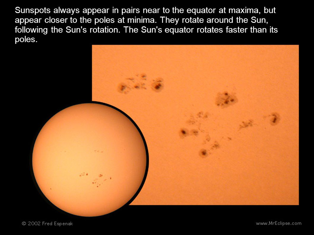 Sunspots always appear in pairs near to the equator at maxima, but appear closer to the poles at minima.