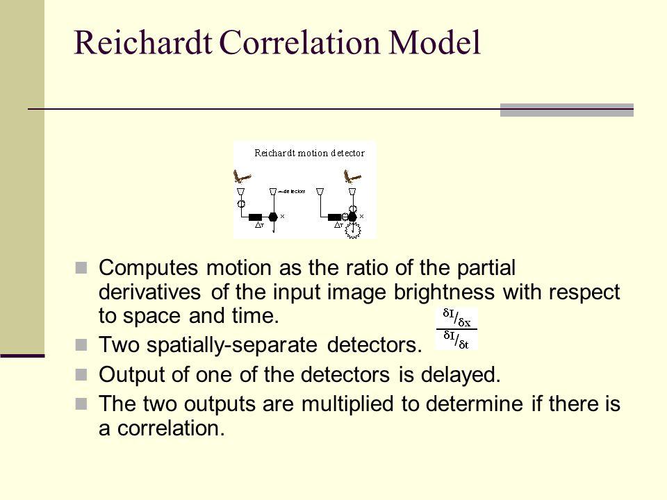 Reichardt Correlation Model