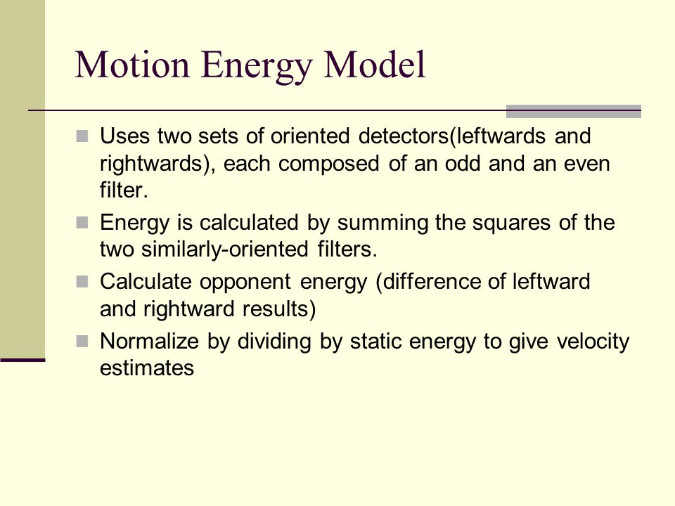 Motion Energy Model Uses two sets of oriented detectors(leftwards and rightwards), each composed of an odd and an even filter.