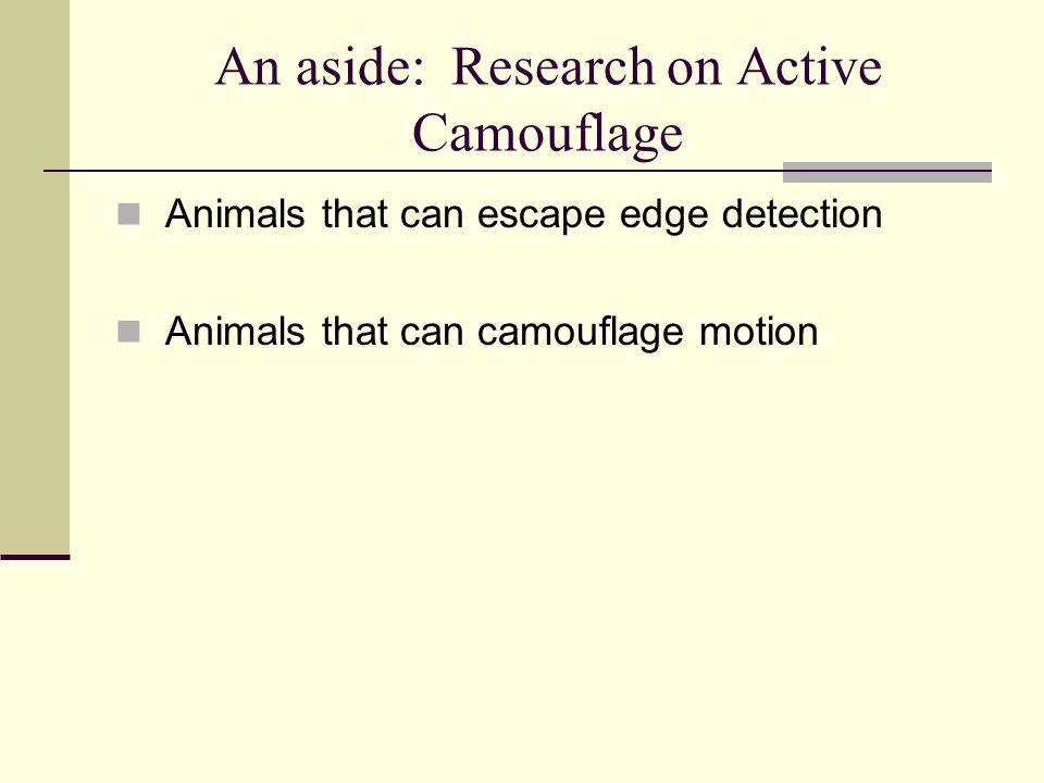 An aside: Research on Active Camouflage
