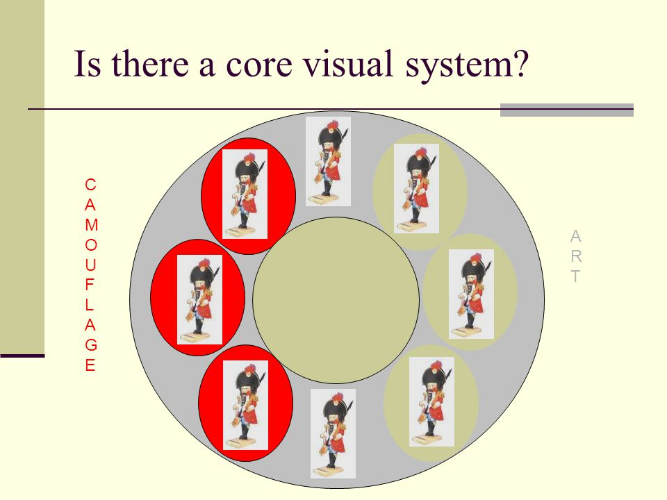 Is there a core visual system