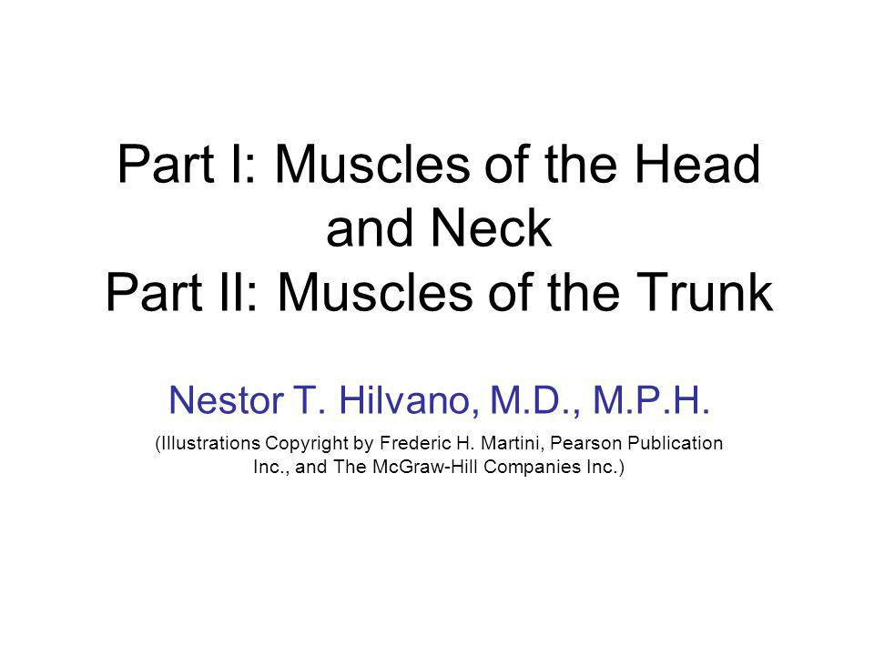 Part I: Muscles of the Head and Neck Part II: Muscles of the Trunk