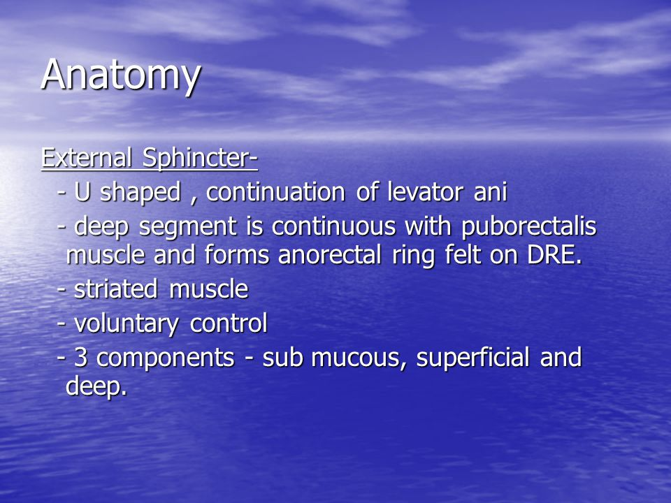 Anatomy External Sphincter- - U shaped , continuation of levator ani