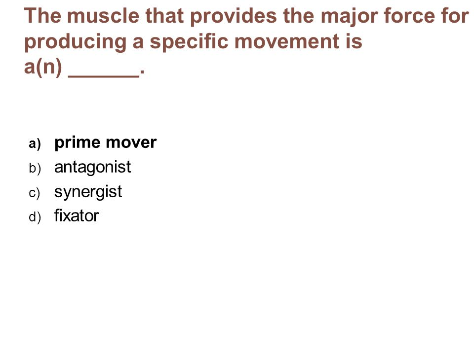 The muscle that provides the major force for producing a specific movement is a(n) ______.