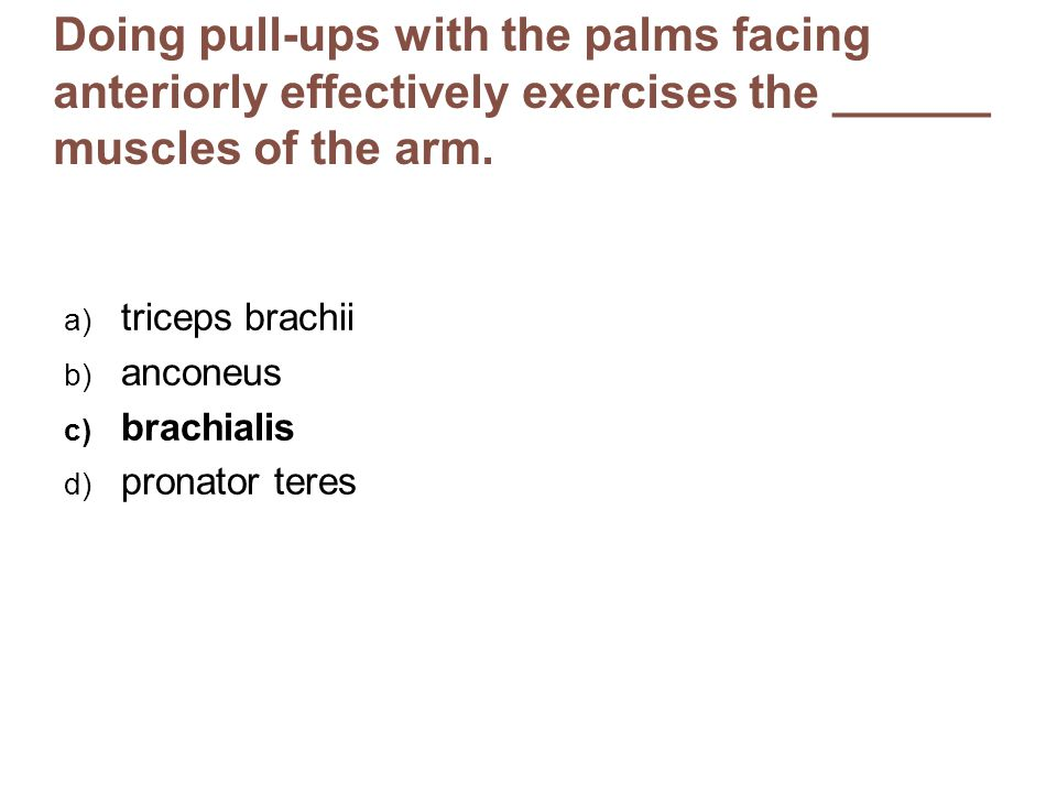 Doing pull-ups with the palms facing anteriorly effectively exercises the ______ muscles of the arm.