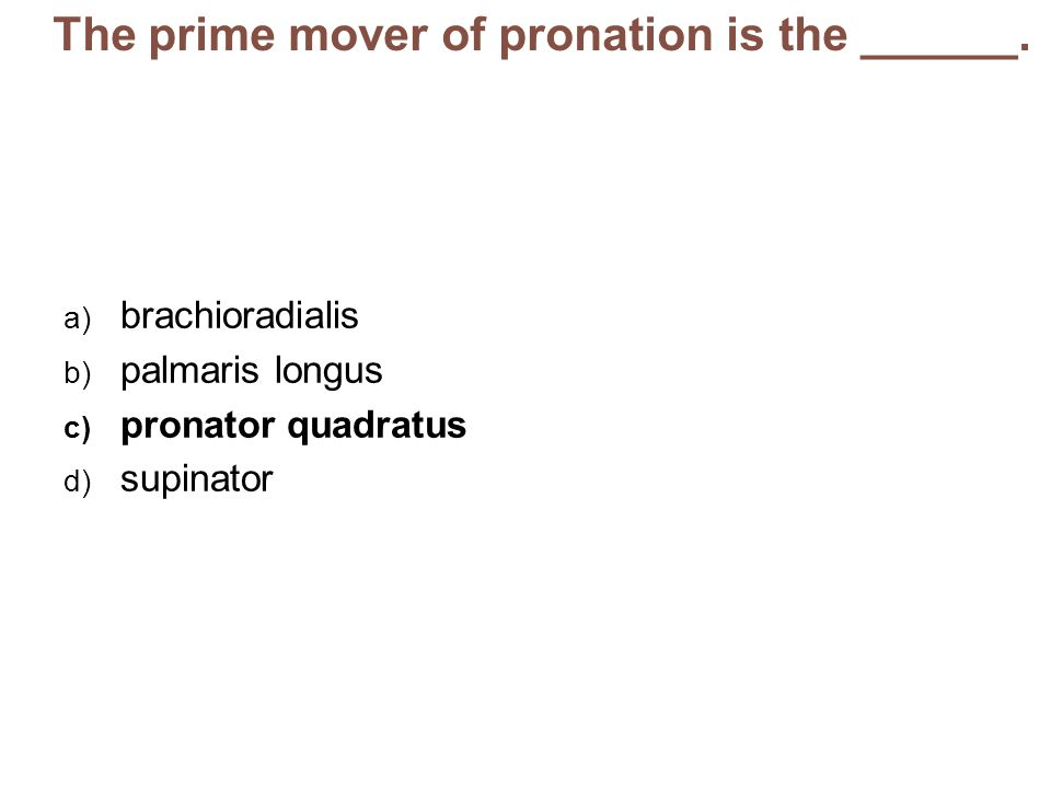 The prime mover of pronation is the ______.
