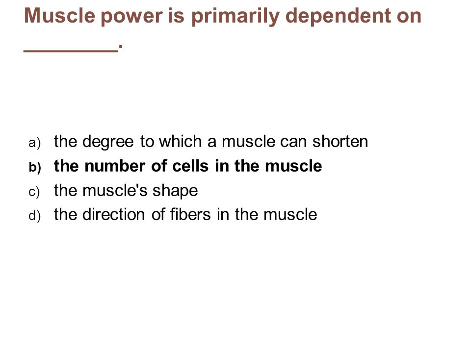 Muscle power is primarily dependent on ________.