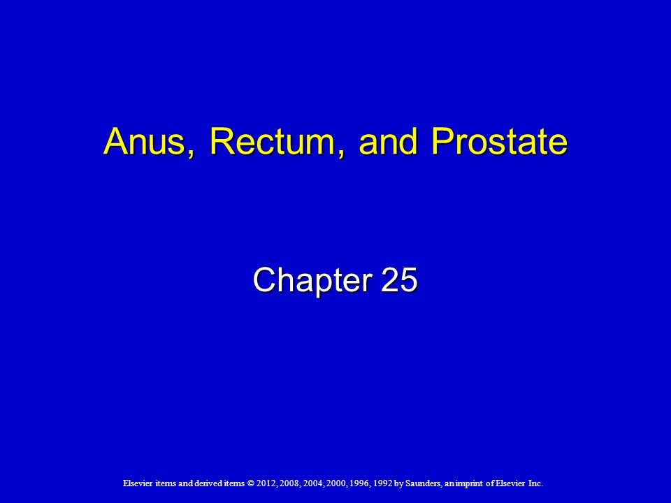 Anus, Rectum, and Prostate