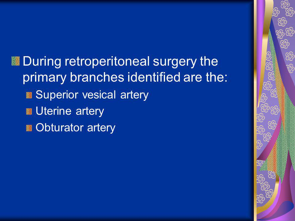 During retroperitoneal surgery the primary branches identified are the: