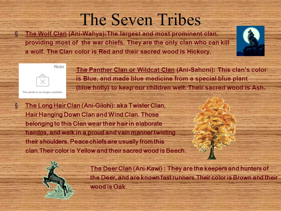 The Seven Tribes The Wolf Clan (Ani-Wahya):The largest and most prominent clan,