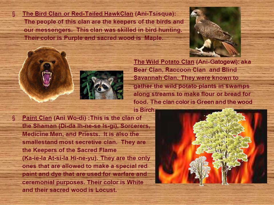 The Bird Clan or Red-Tailed HawkClan (Ani-Tsisqua):