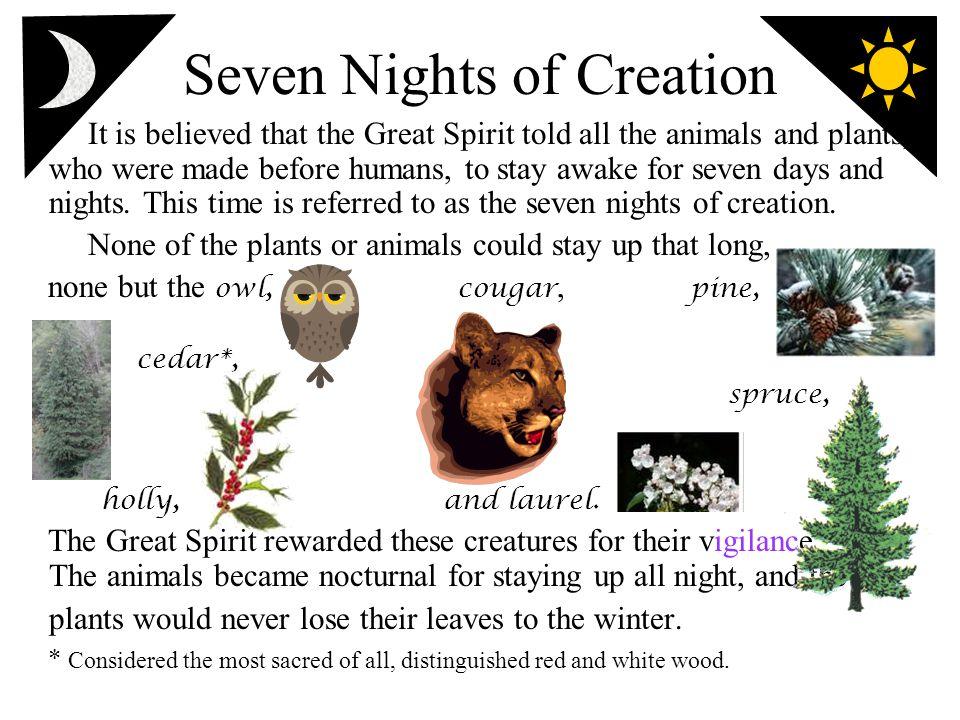 Seven Nights of Creation
