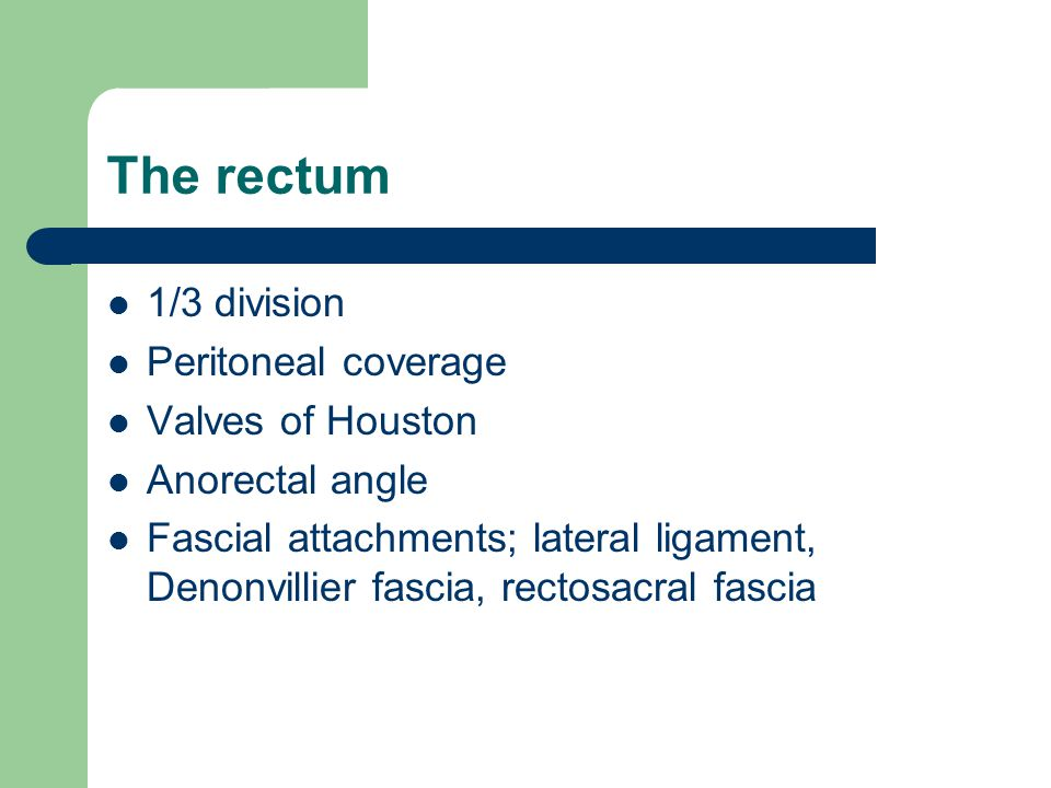 The rectum 1/3 division Peritoneal coverage Valves of Houston