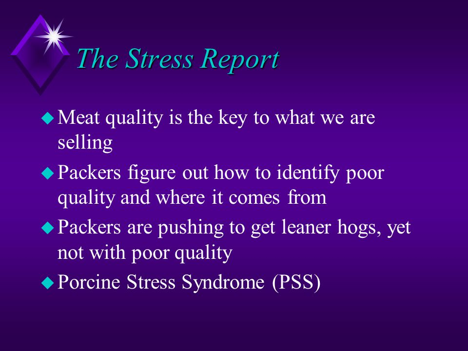 The Stress Report Meat quality is the key to what we are selling