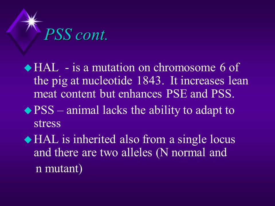 PSS cont. HAL - is a mutation on chromosome 6 of the pig at nucleotide 1843. It increases lean meat content but enhances PSE and PSS.