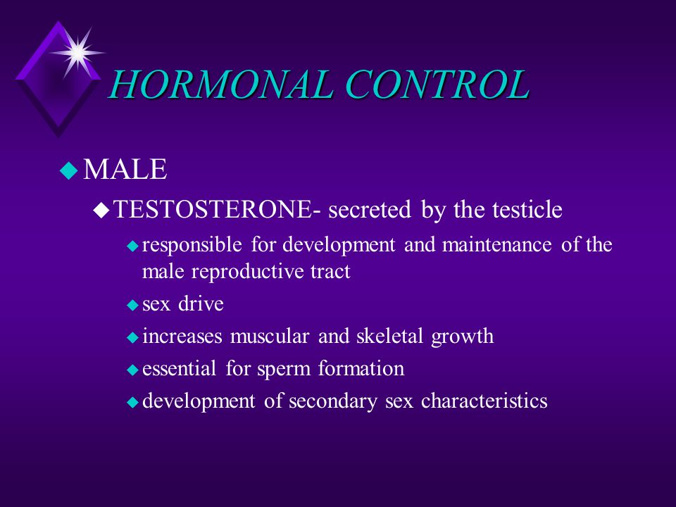 HORMONAL CONTROL MALE TESTOSTERONE- secreted by the testicle