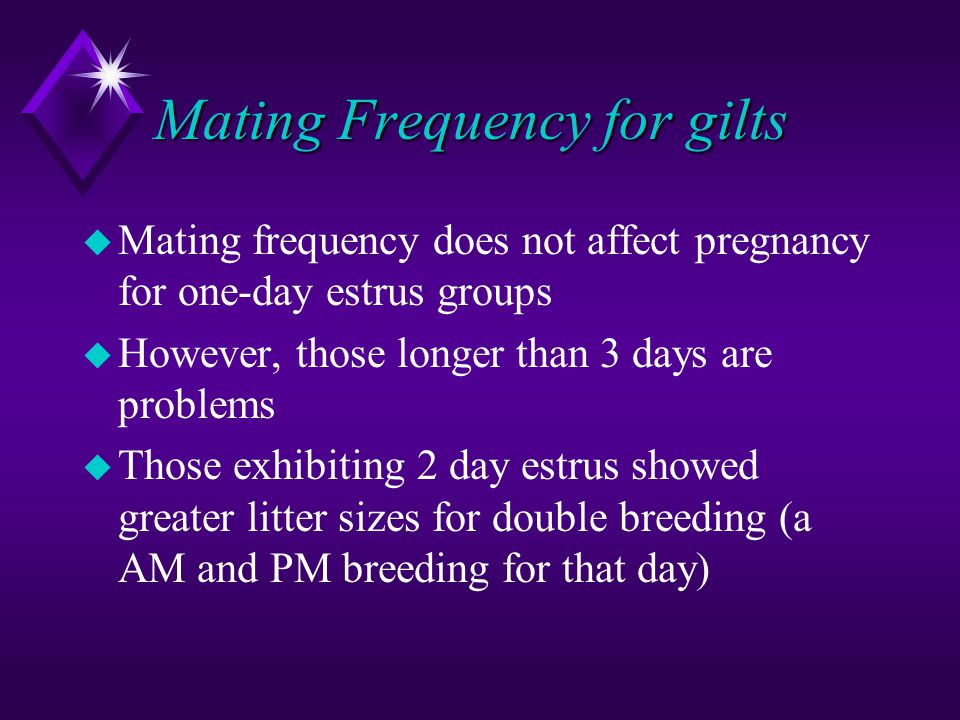 Mating Frequency for gilts