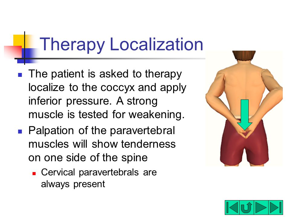 Therapy Localization The patient is asked to therapy localize to the coccyx and apply inferior pressure. A strong muscle is tested for weakening.