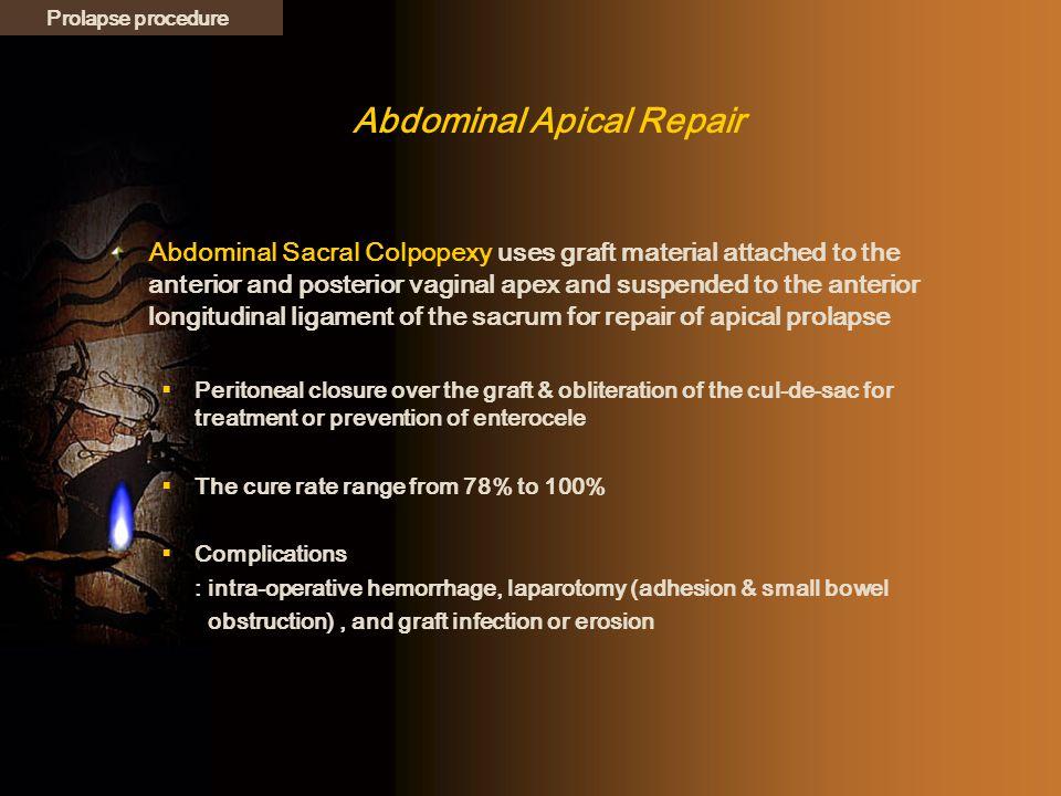 Abdominal Apical Repair