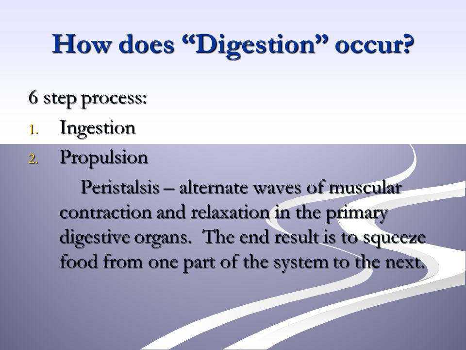 How does Digestion occur