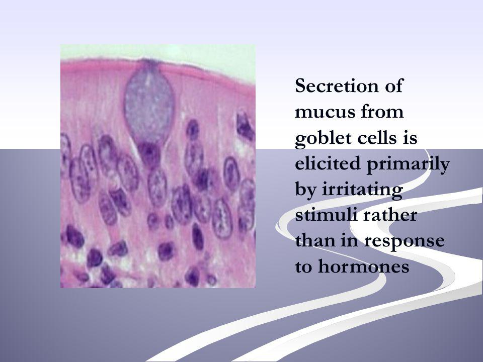 Secretion of mucus from goblet cells is elicited primarily by irritating stimuli rather than in response to hormones