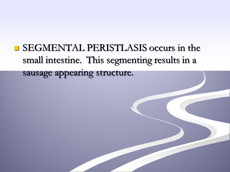 SEGMENTAL PERISTLASIS occurs in the small intestine
