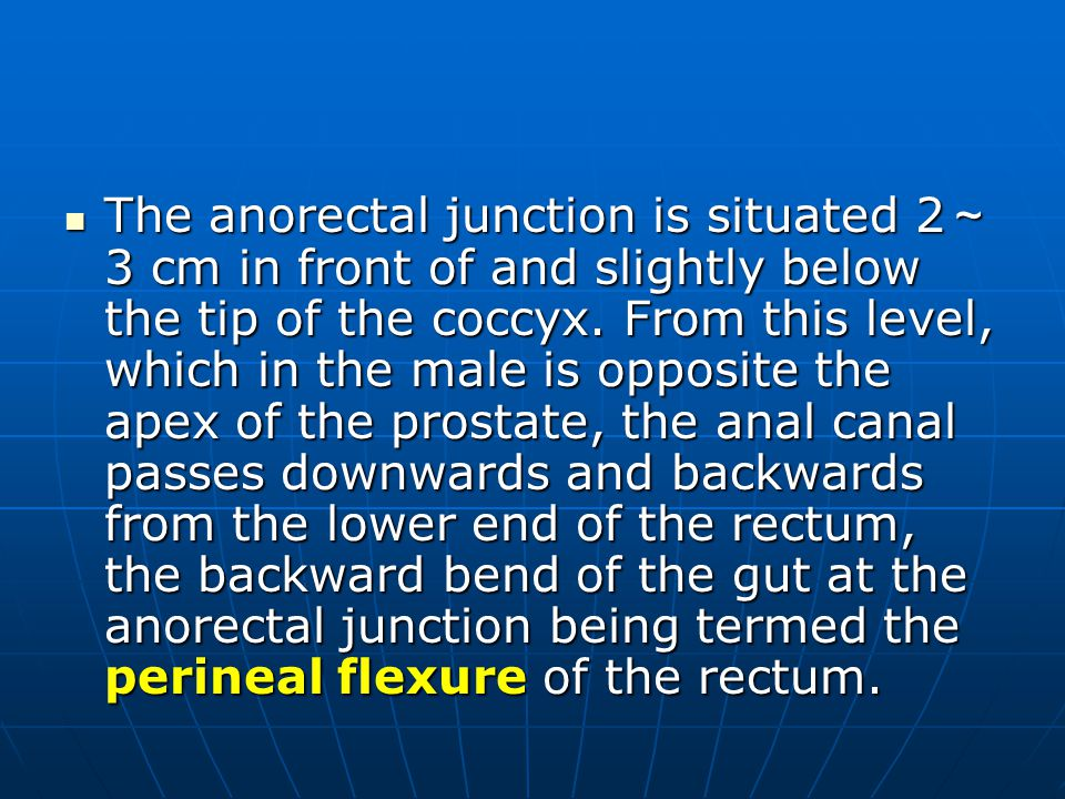 The anorectal junction is situated 2~3 cm in front of and slightly below the tip of the coccyx.