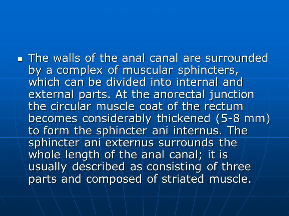 The walls of the anal canal are surrounded by a complex of muscular sphincters, which can be divided into internal and external parts.